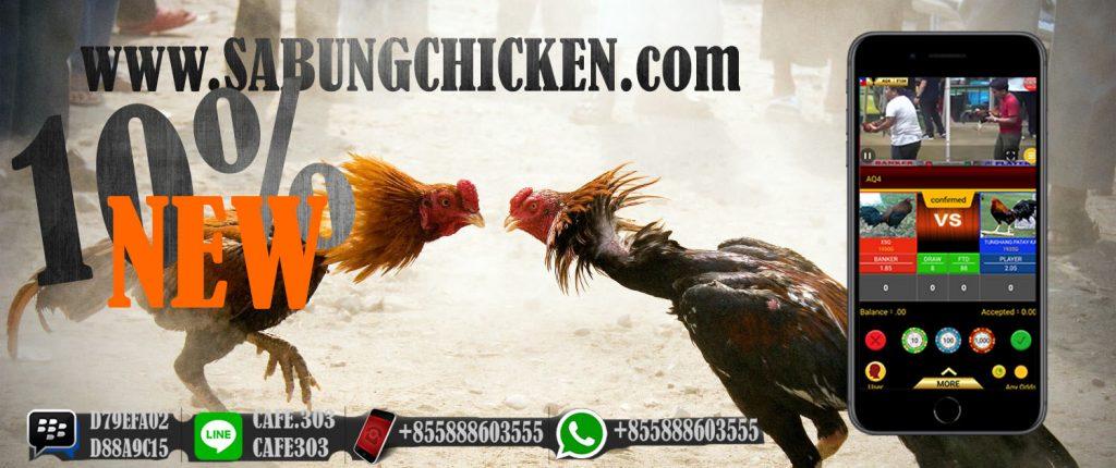 """Promo Bonus Sabung Ayam """"width ="""" 640 """"height ="""" 269"""